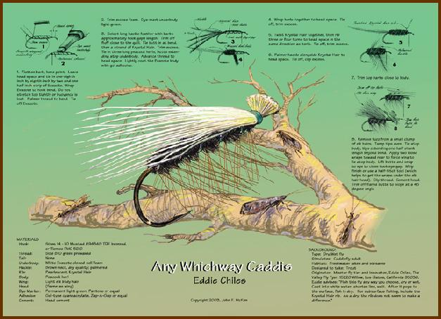Any Whichway Caddis - Eddie Chiles