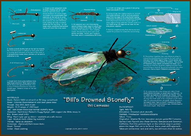 Bill's Drowned Stonefly - Bill Carnazzo
